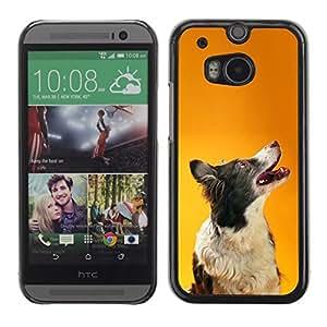 TopCaseStore / la caja del caucho duro de la cubierta de protección de la piel - Border Collie Orange Smart Dog Canine - HTC One M8