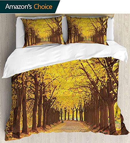 shirlyhome Landscape 3 PCS King Size Comforter Set,Botanical Garden Autumn Leaves in The Fall Linden Alley in Kiev Ukraine Image with 1 Pillowcase for Kids Bedding 68