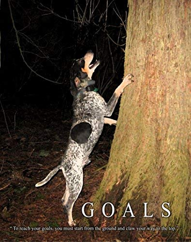 Raccoon Coon Hunting Dog Motivational Poster Art Print 11×14 Wall Decor Pictures