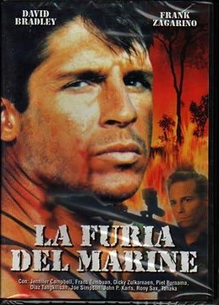 La Furia Del Marine [Italia] [DVD]: Amazon.es: David Bradley ...