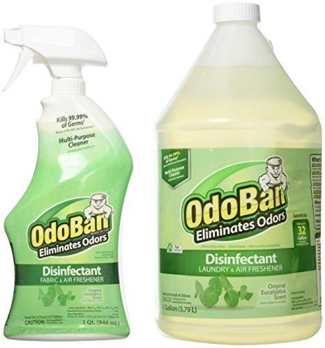 OdoBan Odor Disinfectant, Eucalyptus