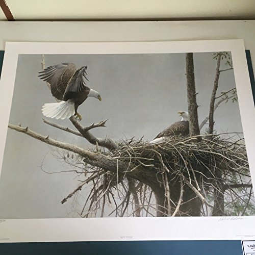 Limited Edition Print Return of the Bald Eagle Pair-ROBERT BATEMAN