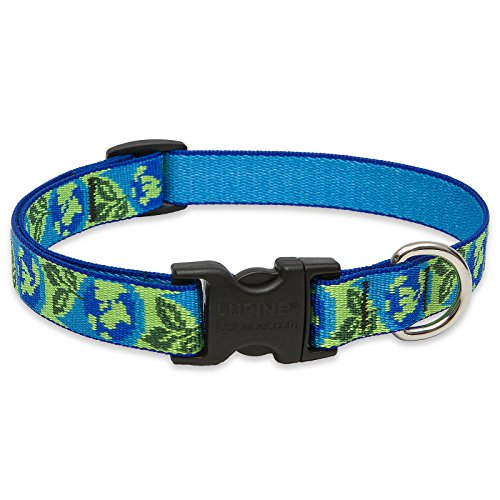LupinePet 3/4-Inch Earth Day 15-25-Inch Adjustable Dog Collar for Large Dogs