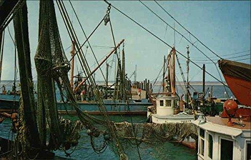 Commercial Fishing Boats - Shinnecock Bay Hampton Bays, New York Original Vintage Postcard