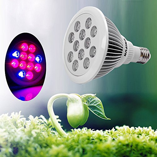 Top 10 Best Led Hydroponic Grow Lights Bulbs Strips