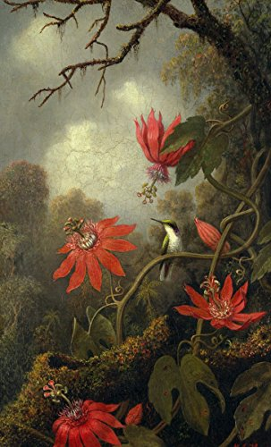 martin-johnson-heade-hummingbird-and-passionflowers-canvas-art-print-size-14x24-canvas-print-rolled-