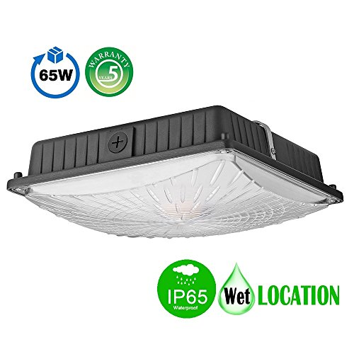 1000LED LED Canopy Lights Ceiling Fixtures 65W 8,125LM Daylight 5000K 250W HID/HPS Replacement Waterproof IP65 Gas station Garage Light UL DLC Listed - Canopy Light Fixtures