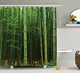 Tall Shower Curtain Green Shower Curtain Bamboo Decor by Ambesonne, Picture of a Forest Exotic Fresh Jungle Vision with Tall Shoots Tropic Wonderland Print, Fabric Bathroom Shower Curtain Set, 75 Inches Long, Green