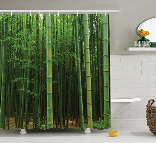 (Ambesonne Green Shower Curtain Bamboo Decor, Picture of a Forest Exotic Fresh Jungle Vision with Tall Shoots Tropic Wonderland Print, Fabric Bathroom Shower Curtain Set, 75 Inches Long,)