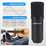 USB Streaming Podcast PC Microphone,Professional