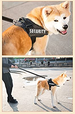 Faylife Servicce Dog Vest Harness, Adjustable Nylon with SERVICE DOG IN TRAINING Reflective Patchesfor Large Medium Small Dogs