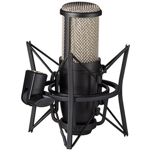 https://www.amazon.com/AKG-Perception-Professional-Studio-Microphone/dp/B00167UQLO/ref=sr_1_2?ie=UTF8&qid=1529304395&sr=8-2&keywords=Vocal+Microphone+AKG-P220