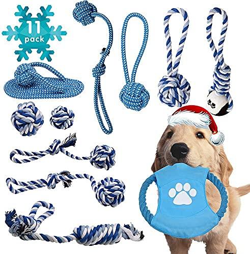 11 Stück Hundespielzeug Set,Robustes Welpenspielzeug blau Aus Reine Baumwolle,Hund Interaktives Spielzeug für kleine und…