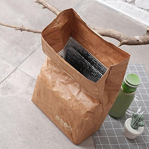 6L Paper Lunch Bag Brown Insulated Thermal Lunch Box Sack Reusable Kraft Paper Bag with Aluminum Film for Office School