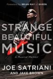 Strange Beautiful Music: A Musical Memoir