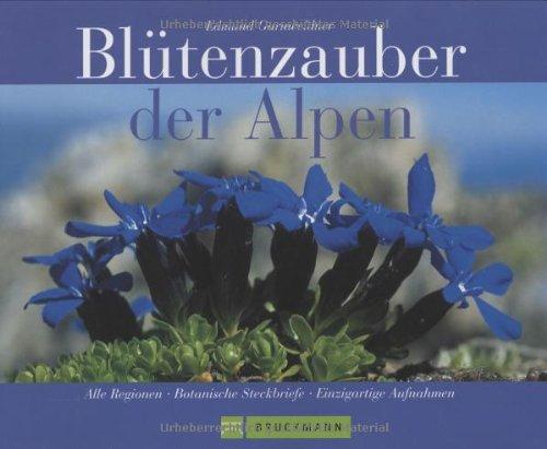 Blütenzauber der Alpen: Alle Regionen - Botanische Steckbriefe - Einzigartige Aufnahmen