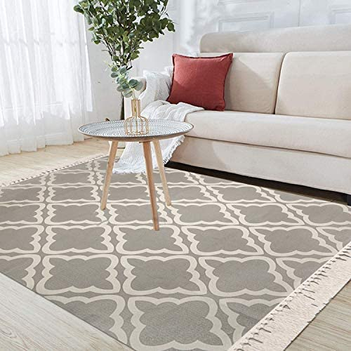 Pauwer Large Cotton Area Rug 4 x 6 Washable Hand Woven Cotton Area Rug