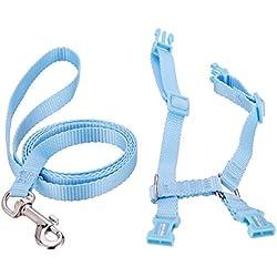 Polkar Adjustable Pet Rabbit Walking Harness Leash Lead with Small Bell (Small, blue)