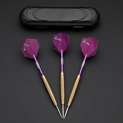 hopewey 3 Pcs Profi Steeldarts Black Coated Metal Barrels 19G Darts Steel with Hard Box Case, Aluminum Shaft, Standard PET Flights D19 by hopewey