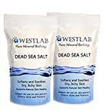 Amazon Price History for:Dead Sea Salt Mineral Bathing (Soothing, for Irritated Skin) 2 Pack (4.4 lb total)