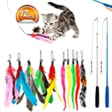 JIARON Feather Teaser Cat Toy - 2PCS Retractable Cat Wand Toys and 10PCS Replacement Teaser with Bell Refills - Interactive Catcher Teaser and Funny Exercise for Kitten or Cats.