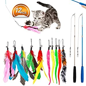 JIARON Feather Teaser Cat Toy, 2PCS Retractable Cat Wand Toys and 10PCS Replacement Teaser with Bell Refills, Interactive Catcher Teaser and Funny Exercise for Kitten or Cats. 11