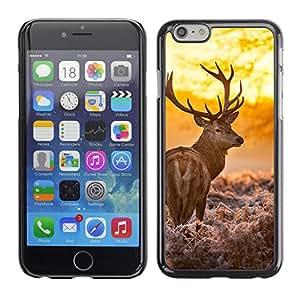 LECELL--Funda protectora / Cubierta / Piel For iPhone 6 -- Resplandeciente ciervos --
