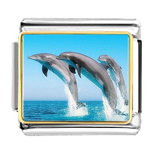 - GiftJewelryShop Gold Plated Three Cute Jump Dolphin Bracelet Link Photo Italian Charms