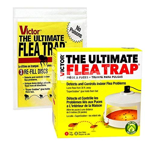 Victor M230 Ultimate Flea Trap (Pack of 1 Trap and Refill combo)