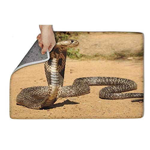 - fhmatx Reptile Snake Cobra Bath Mat Door Mat Non Slip Soft and Washable Doormat Cute Funny Welcome Entrance Mat for Outdoor Or Indoor,23.5 X 15.5 Inch
