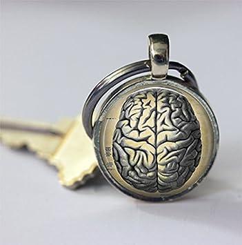 Llavero de cerebro con anatomía humana y ciencia médica ...
