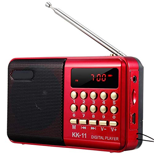 Hanpmy Mini Portable Fashion Music Player FM Radio Speaker TF Card U-Disk Reader