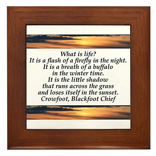(CafePress What is Life Framed Tile, Decorative Tile Wall Hanging)