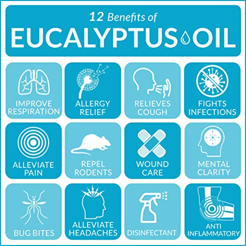 Buy essential oils. ArtNaturals 100% Pure Eucalyptus Essential Oil - (4.0 Fl Oz / 118ml) - Therapeutic Grade Natural Oils