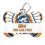 NCAA Illinois Fighting Illini Custom Pet ID Tag