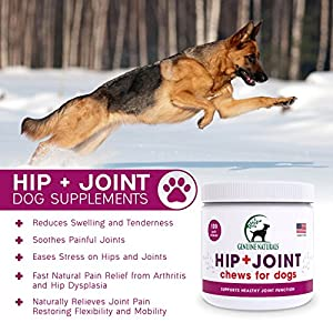 Glucosamine Chondroitin, MSM, Organic Turmeric Soft Chews by Genuine Naturals, Hip and Joint Supplement for Dogs, Supports Healthy Joint Function and Helps With Pain Relief, 120-Count by Genuine Naturals