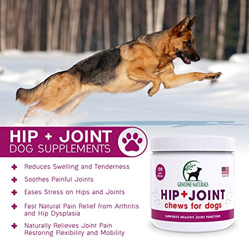 Genuine Naturals™ Glucosamine Chondroitin, MSM, Organic Turmeric Soft Chews by, Hip and Joint Supplement for Dogs, Supports Healthy Joint Function and Helps With Pain Relief, 120-Count by Genuine NaturalsTM (Image #1)