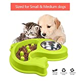 Dog Bowl Slow Feeder and Water Bowl Anti-Slip Bloating stop for Small Medium dog Cat Pet (green) For Sale