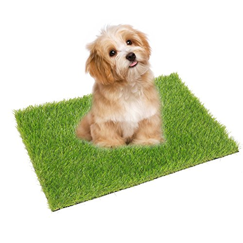 ECO MATRIX Artificial Grass Pet Turf Dog Pee Pad for Entrance Door Mat Green Fake Grass Doormat Cat Training Lawn Rug Small Synthetic Grass Puppy Tray Carpet (46cm x 61cm)