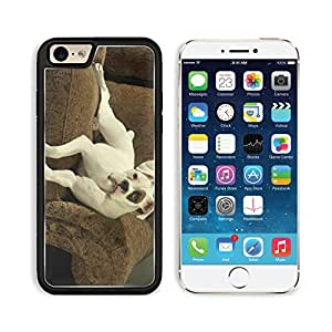 Dof White Boxer Pets Animal Apple iPhone 6 TPU Snap Cover Premium Aluminium Design Back Plate Case Customized Made to Order Support Ready Liil iPhone_6 Professional Case Touch Accessories Graphic Covers Designed Model Sleeve HD Template Wallpaper Photo Ja by lolosakes