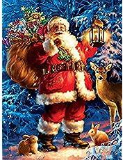 Viiegor 5D Diamond Painting Kerstmis Full Drill Kits Boor Set, Kerstman Diamant Tekening DIY Diamond Art Kit Voor Volwassenen Ronde Crystal Rhinestone Ambachten Voor Thuis Wanddecoratie 30x40cm