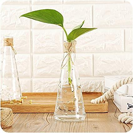 Amazon Glass Flower Vase Terrarium Succulents Plant Gift Micro