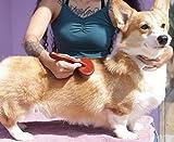 MushoomCat Professional Slicker Brush Pet Grooming