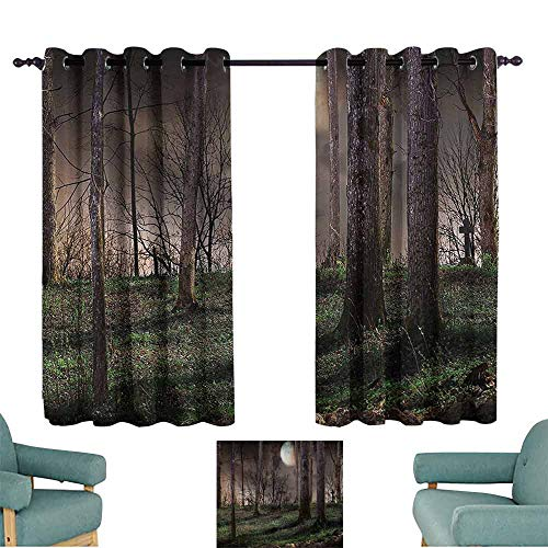 Mannwarehouse Gothic Decor Collection Kids Room Curtains Dark Night in The Forest with Full Moon Horror Theme Grunge Style Halloween Photo Set of Two Panels 55