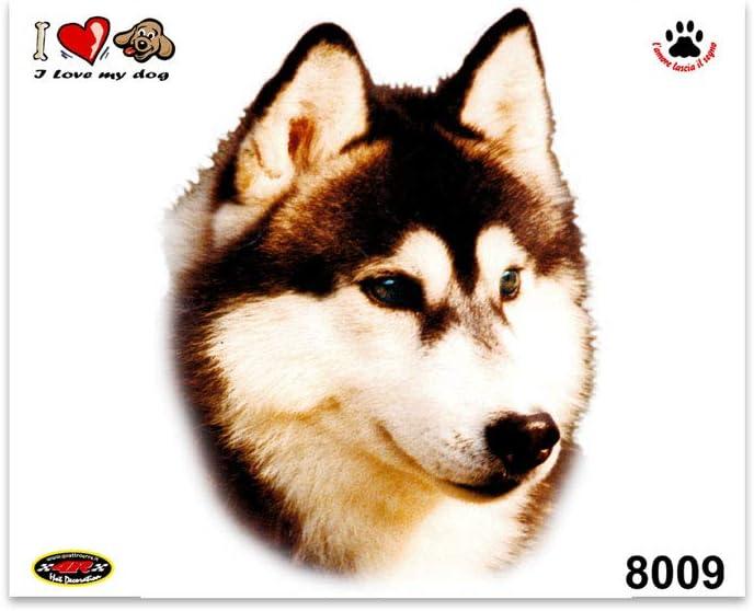 quattroerre 8001/adhesivo perro pastor alem/án a bordo tabla