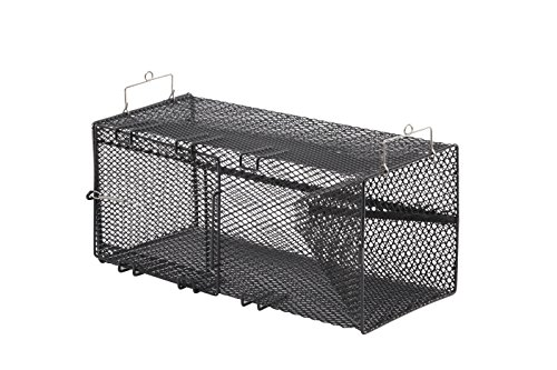 Frabill Minnow Trap, 8 x 8 x 18-Inch, Black (Perch Trap)