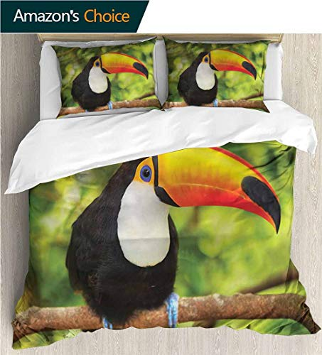 carmaxs-home Kids Quilt 3 Piece Bedding Set,Box Stitched,Soft,Breathable,Hypoallergenic,Fade Resistant with Sham and Decorative 2 Pillows,Full Queen-Jungle Toucan Parrot Rainforest (68