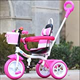 sheng Children Tricycle Male Girl Bikes Child Bikes Baby Trolley 2-5 years old ( Color : Pink )