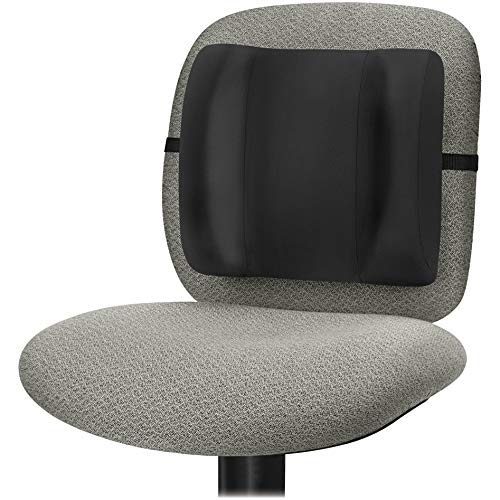 Fellowes 91905 Backrest High Profile 13-Inch x4-Inch x12-Inch Black (Fellowes High Profile Backrest)