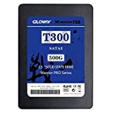 Gloway SATA III 2.5-Inch 7mm Height Solid State Drive SSD Flash with Read Up To 515MB/s 500G Internal SSD 6.0Gb/s for Desktop Laptop Server